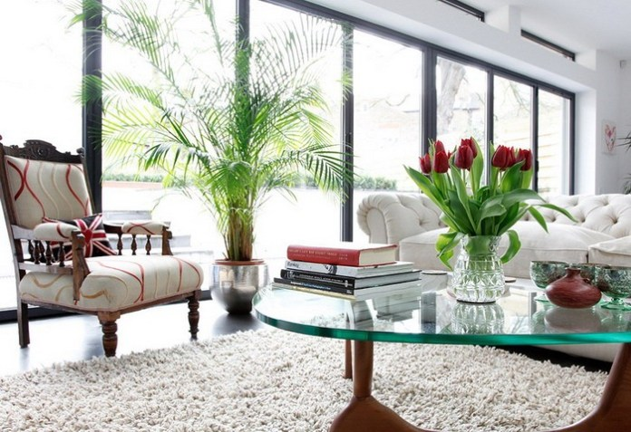 Decorate-your-home-with-indoor-plants
