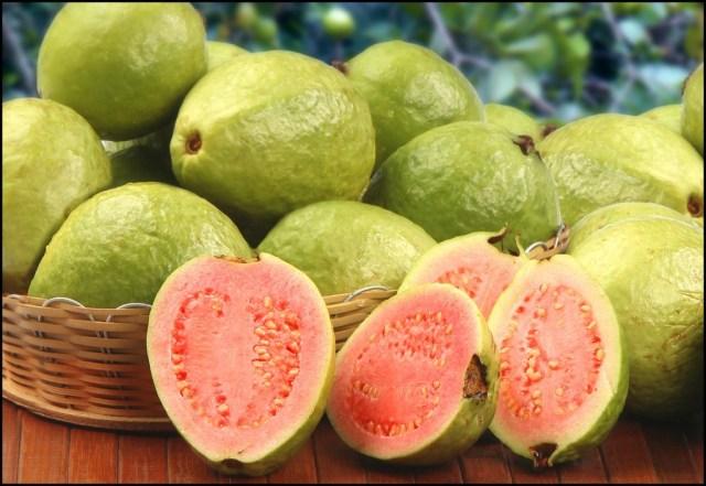 Guava fruit for diabetes