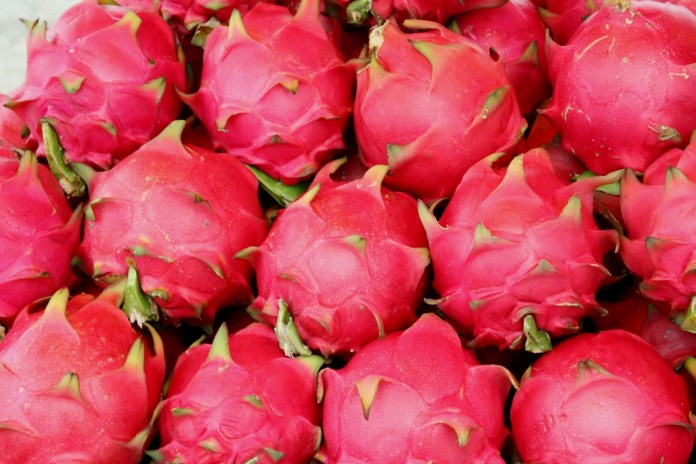 Dragon fruit for health