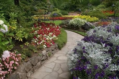 garden path flowers
