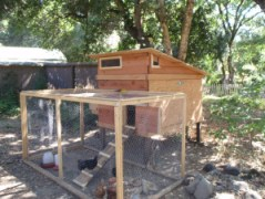 chickencoop1