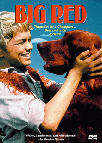 big red dvd of book by Mr. Jim Kjelgaard Patron Saint of Dogs, Boys, And The Outdoors, movies