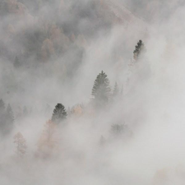Autunno / pioggia / Val di Fassa