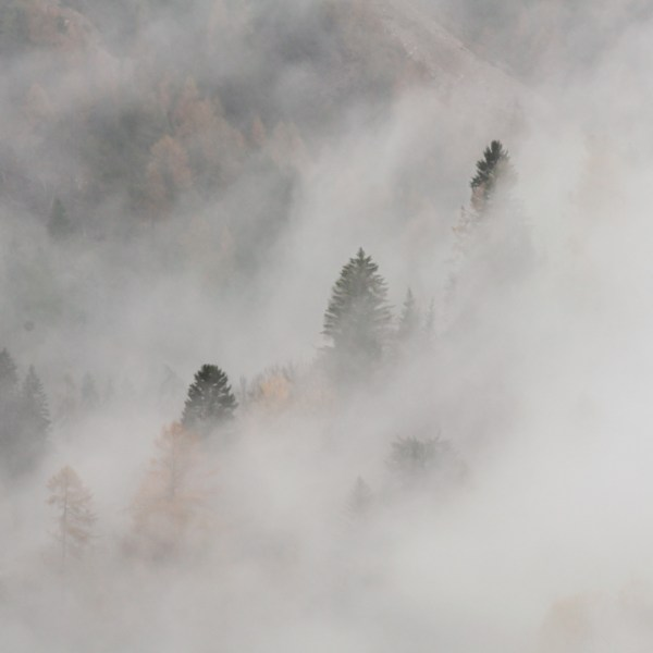 nebbia autunno Moena