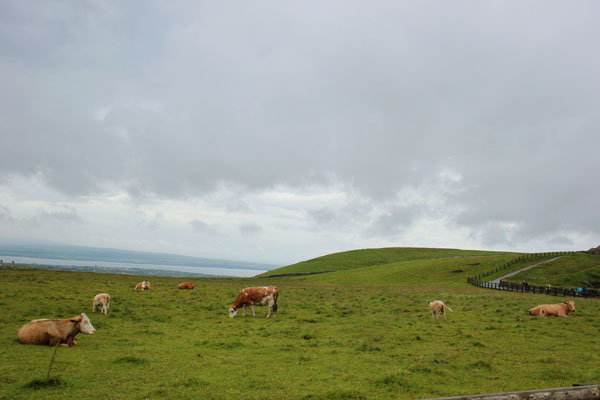 CLIFFS-OF-MOHER-9