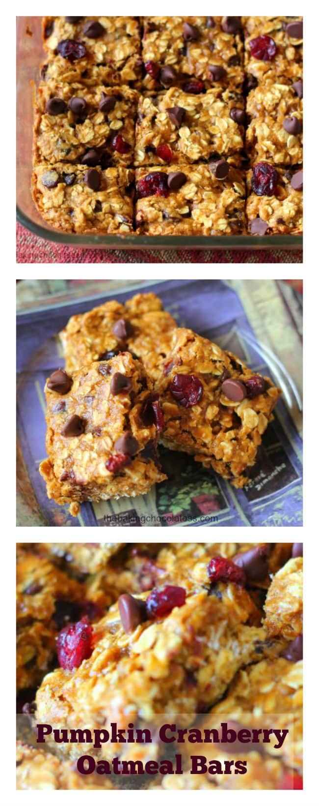These Pumpkin Cranberry Chocolate Chip Oatmeal Bars are the perfect healthy, energy-fiber bar, quick snack on the go and delicious!