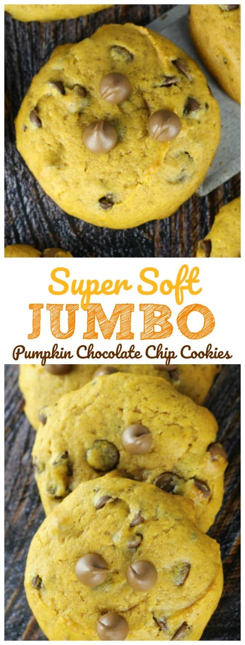 Super Soft Jumbo Pumpkin Chocolate Chip Cookies - Everyone's been begging for these Super Soft Jumbo Pumpkin Chocolate Chip Cookies!  It's no wonder!!  They are super soft, super delicious cake-like pumpkin chocolate chip cookies and they are super duper for every occasion!