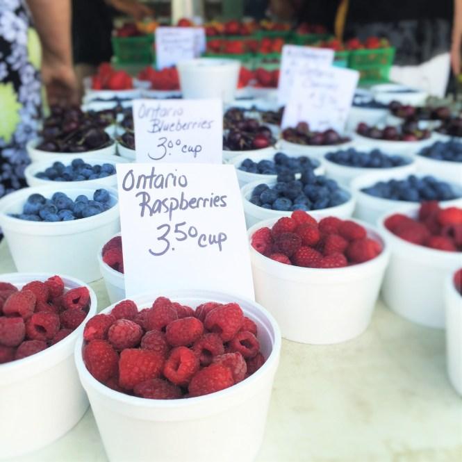summer fruit galettes