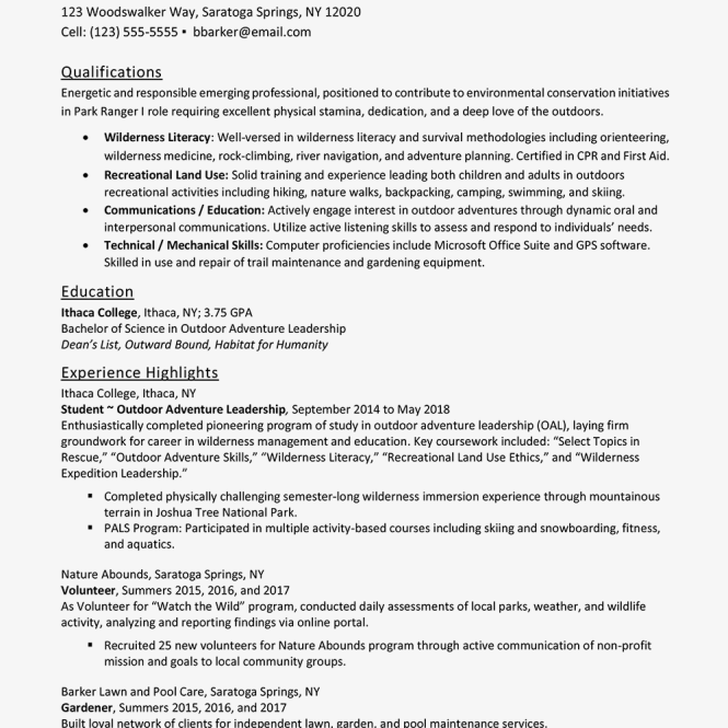 Entry Level Resume Examples And Writing