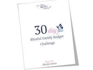 budget challenge