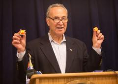 Democrats Begging Tide for 'Sour Cream and Onion' Flavor Pods