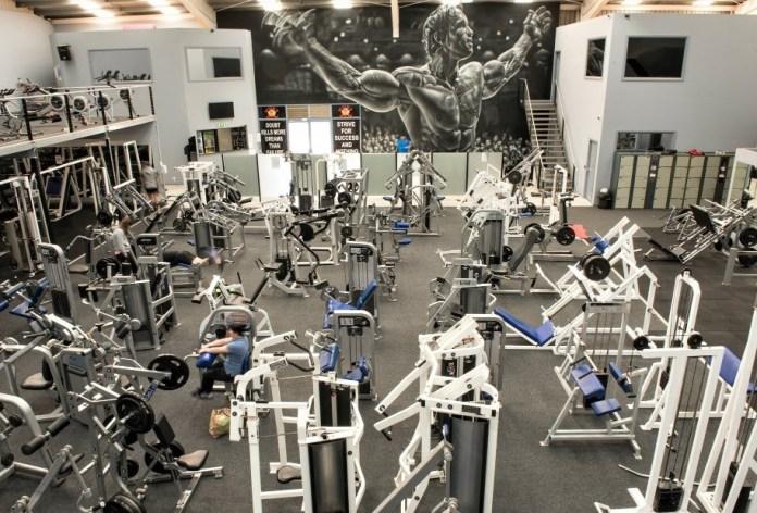 Arnold gym mural