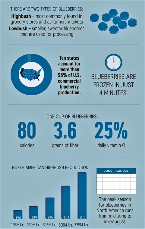 blueberry chart