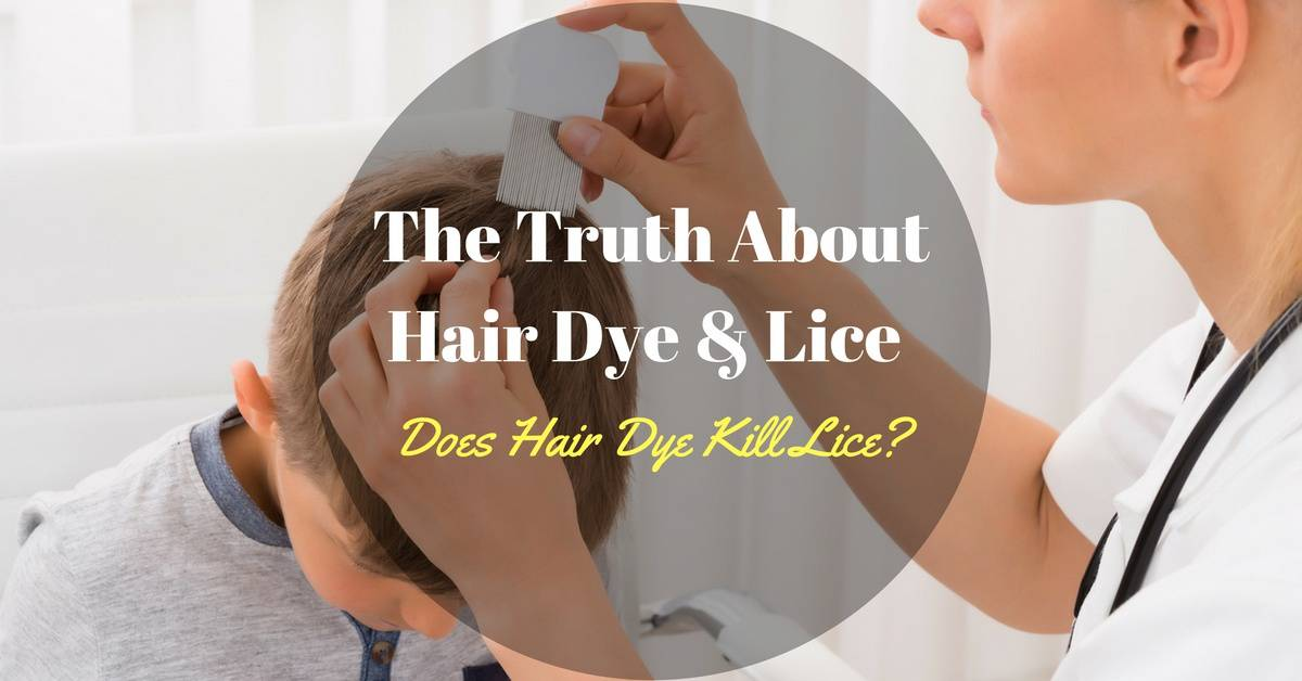 The Truth About Hair Dye And Lice Does Hair Dye Kill Lice