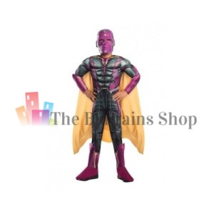 Kids Marvel Avengers Vision Costume in Small