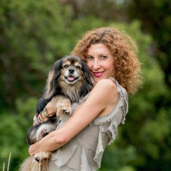 canine acupressure practitioner image