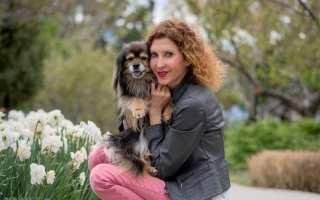 Nationally Board Certified Canine Acupressurist