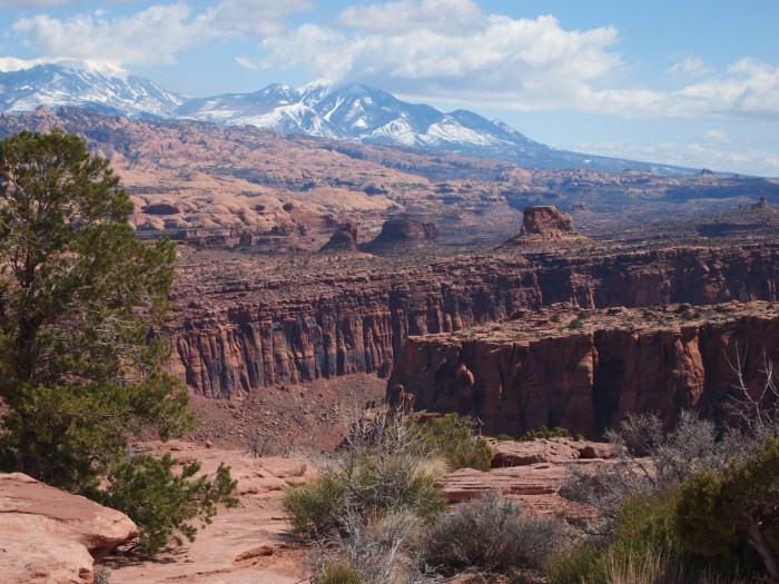 Overlooking Slickrock and the La Sal Mountains. Photo by Charles Watkins – Mountain Dispatch Moab Utah