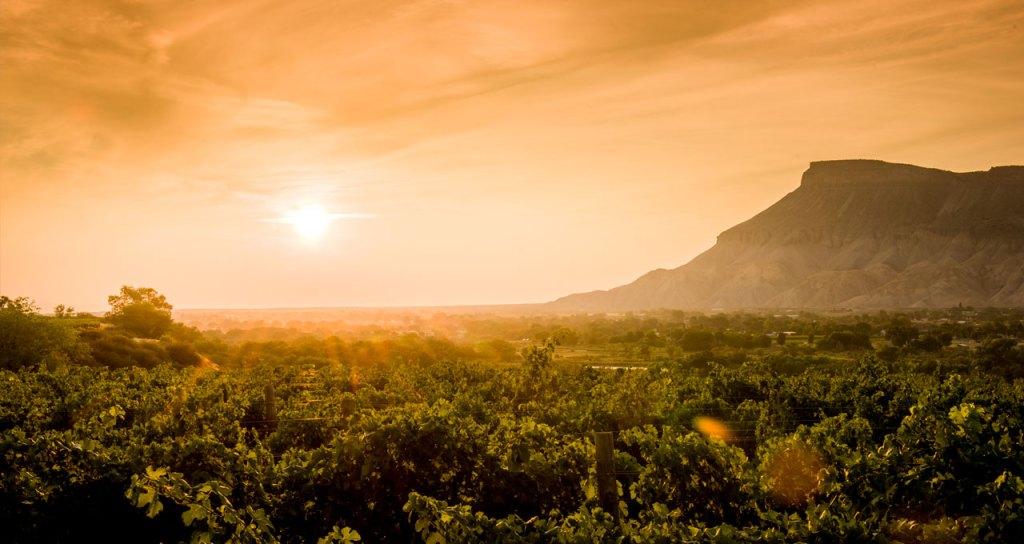 Sunset on the Western Slope's Wine Region
