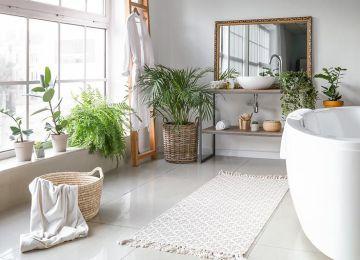 Baño decorado con plantas: Ideas y consejos