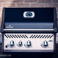 Napoleon Rogue Review - Should you consider a gas grill?