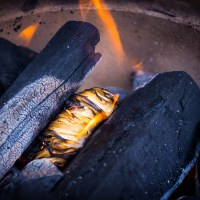 Je BBQ opstarten? #start2bbq
