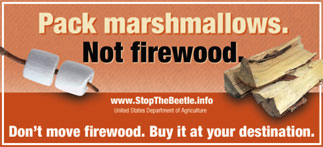 Image result for don't move firewood