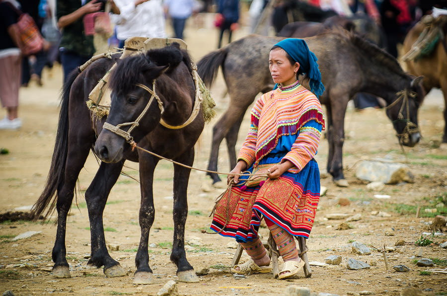 A minority hilltribe woman sits in the market holding the leash of a small horse.