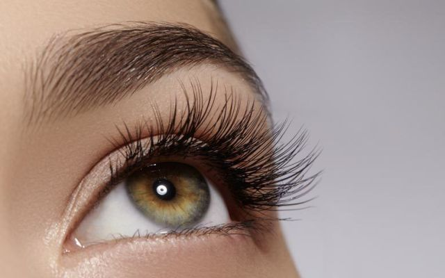 Lash Perfect Chelmsford