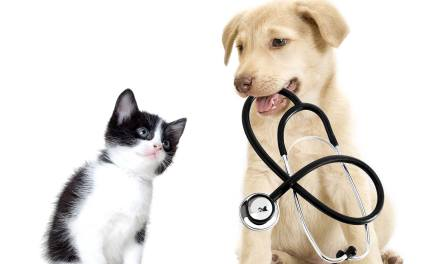 Animal Wellness Clinic Scheduled For June 14