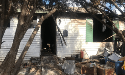 Man Burned, Dogs Perish In Late Night Fire