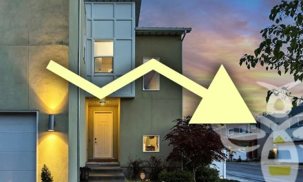 Interest Rates continue to drop, economy still on the rise
