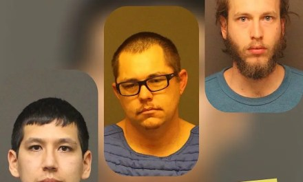 Sting Operation yields arrest of three predators