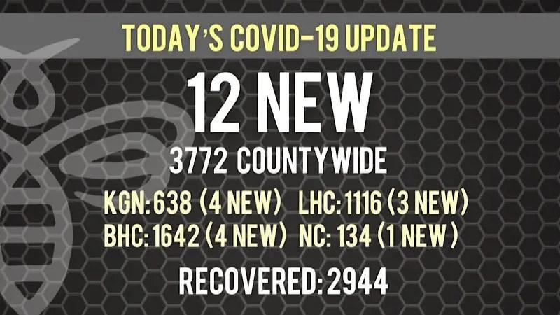 12 New COVID-19 Cases