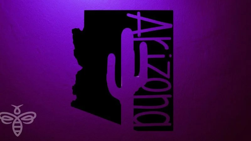 Kingman Participating in Light Arizona Purple Campaign