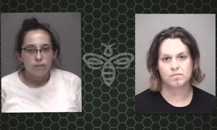 Separate Investigations Lead to Drug Arrests