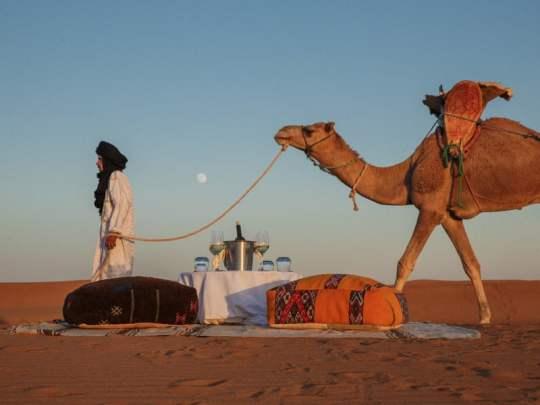 Berber Guide Leading Camel Across Desert Sands Next to Traditional Alfresco Dining Table