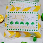 Lucky Treat Bags + Free Printable