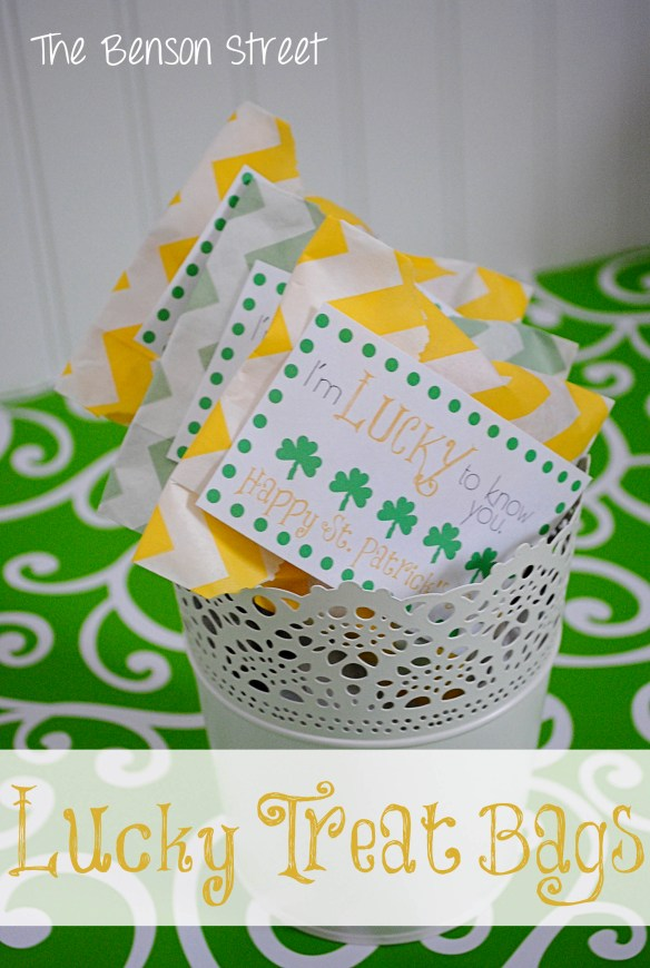 4Lucky Treat Bags at www.thebensonstreet.com