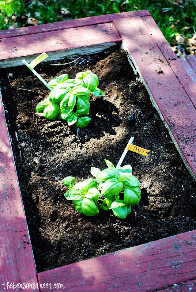 Garden Marker Idea at thebensonstreet.com