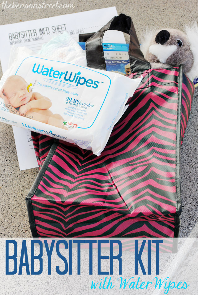 Babysitter Kit with WaterWipes at thebensonstreet.com