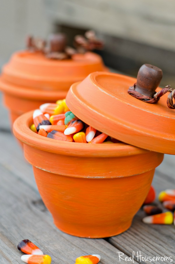 DIY-Pumpkin-Terracotta-Pots-5