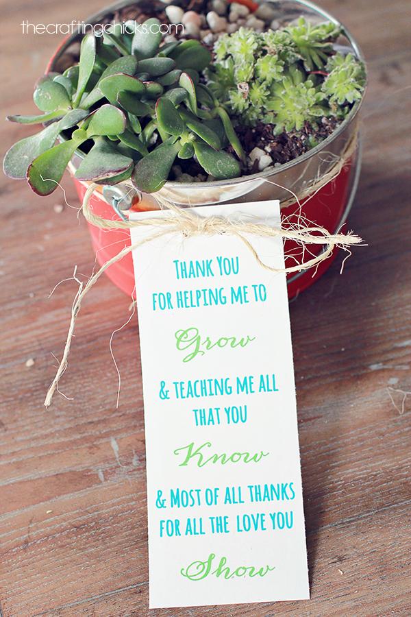 sm-teacher-plant-gift-1