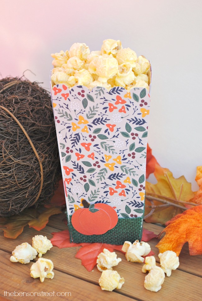 simple-way-to-dress-up-a-popcorn-box-for-a-fall-party-via-thebensonstreet-com