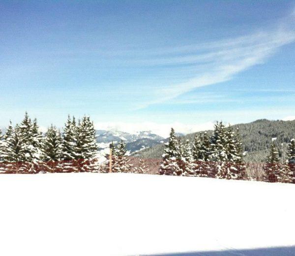 Ski-featured