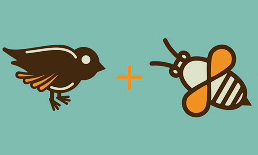 The Best Advice So Far - the birds and the bees / bird icon + bee icon
