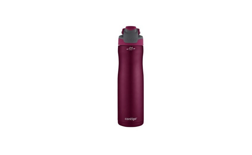 Contigo Autoseal Chill Stainless Steel Water Bottle for