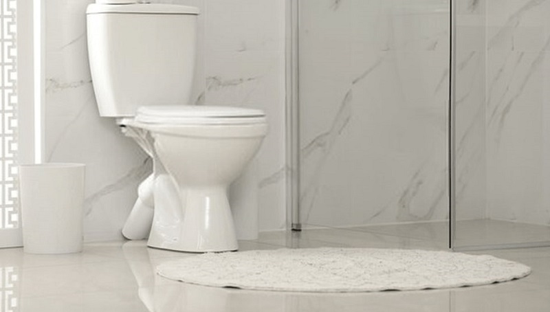The 5 Best Elongated Toilets – Check Our Top Picks!