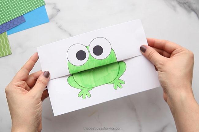 Folding Frog