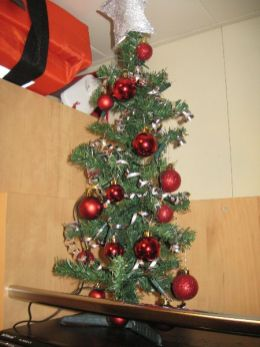 Our tiny but wonderful little christmas tree